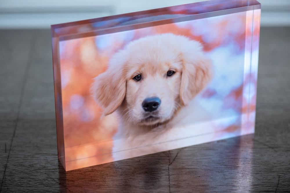 photo product acrylic block.JPG