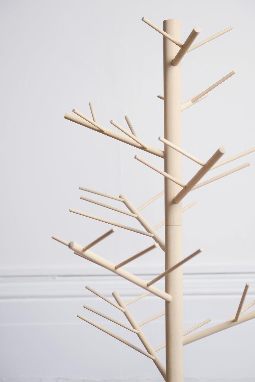 Branch_02.jpg