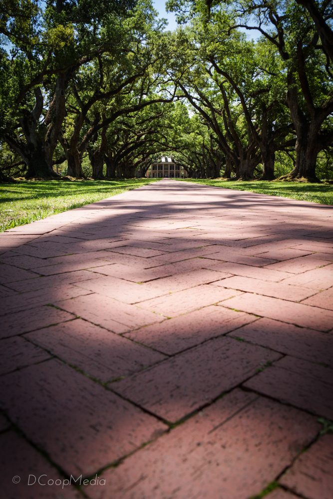 Oak Alley Plantation, New Orleans, LA.  Photo courtesy of DCoop Media