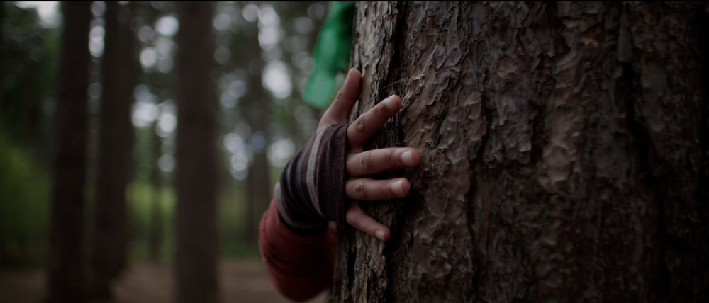 SWARM  (PREMIERE) 2017 | UK | 9'23'' Director: Emma Miranda Moore Choreographer: Amber Doyle  A mysterious group of figures find one another in the woods. They unite in dance and, as the evening falls, reveal their true identities.