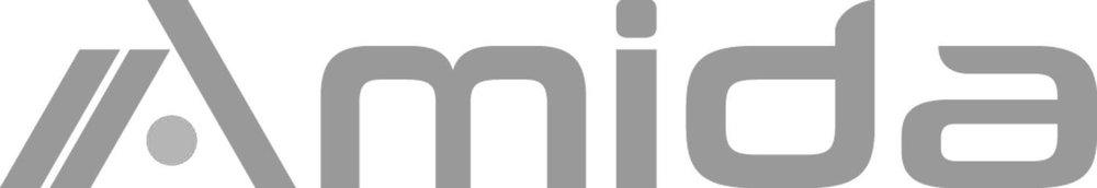 amida+logo.jpg