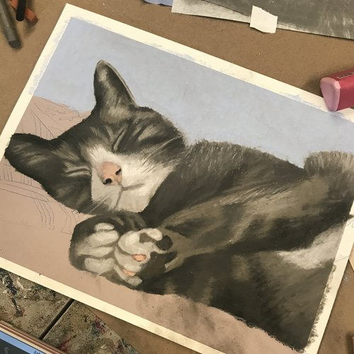 Pet Animal Portrait In Soft Pastel Art Supply Depo In Bowling Green
