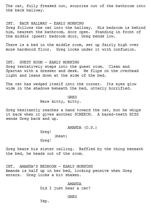 Screenplay Flap 2.png