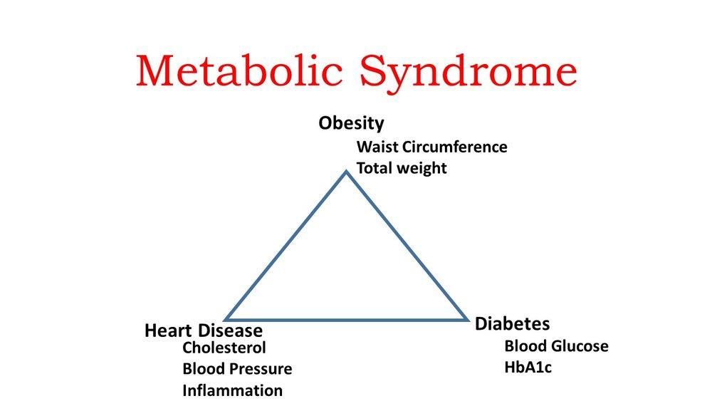 Metabolic-Balance.jpg