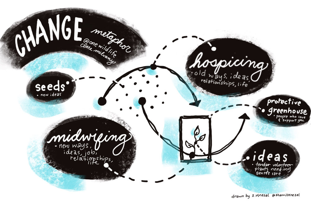 Change visual based on the work of  Meg Wheatley  &  Clare Mulvaney