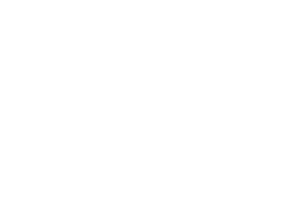 2017 SanFranciscoLatinoFilmFestival_White.png