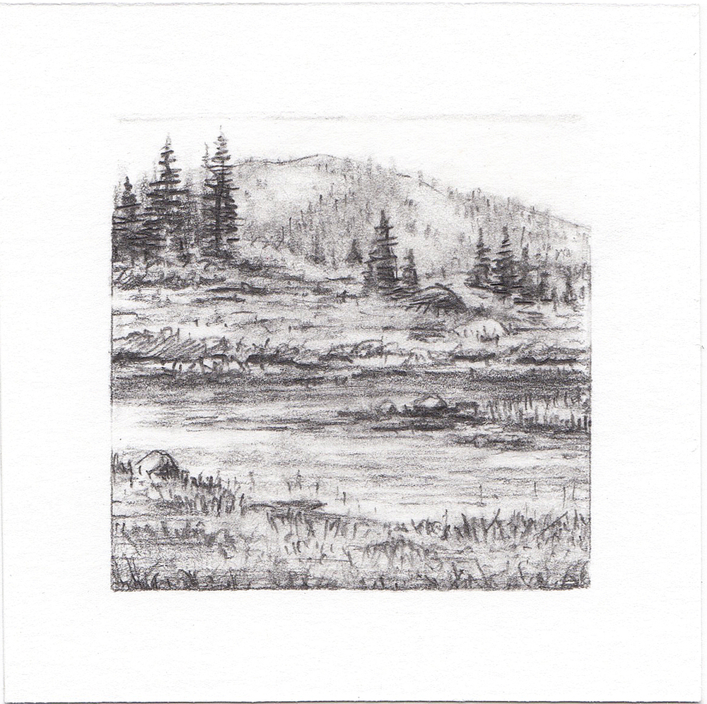 #8 Bloomington Lake, Idaho | 3x3 | graphite
