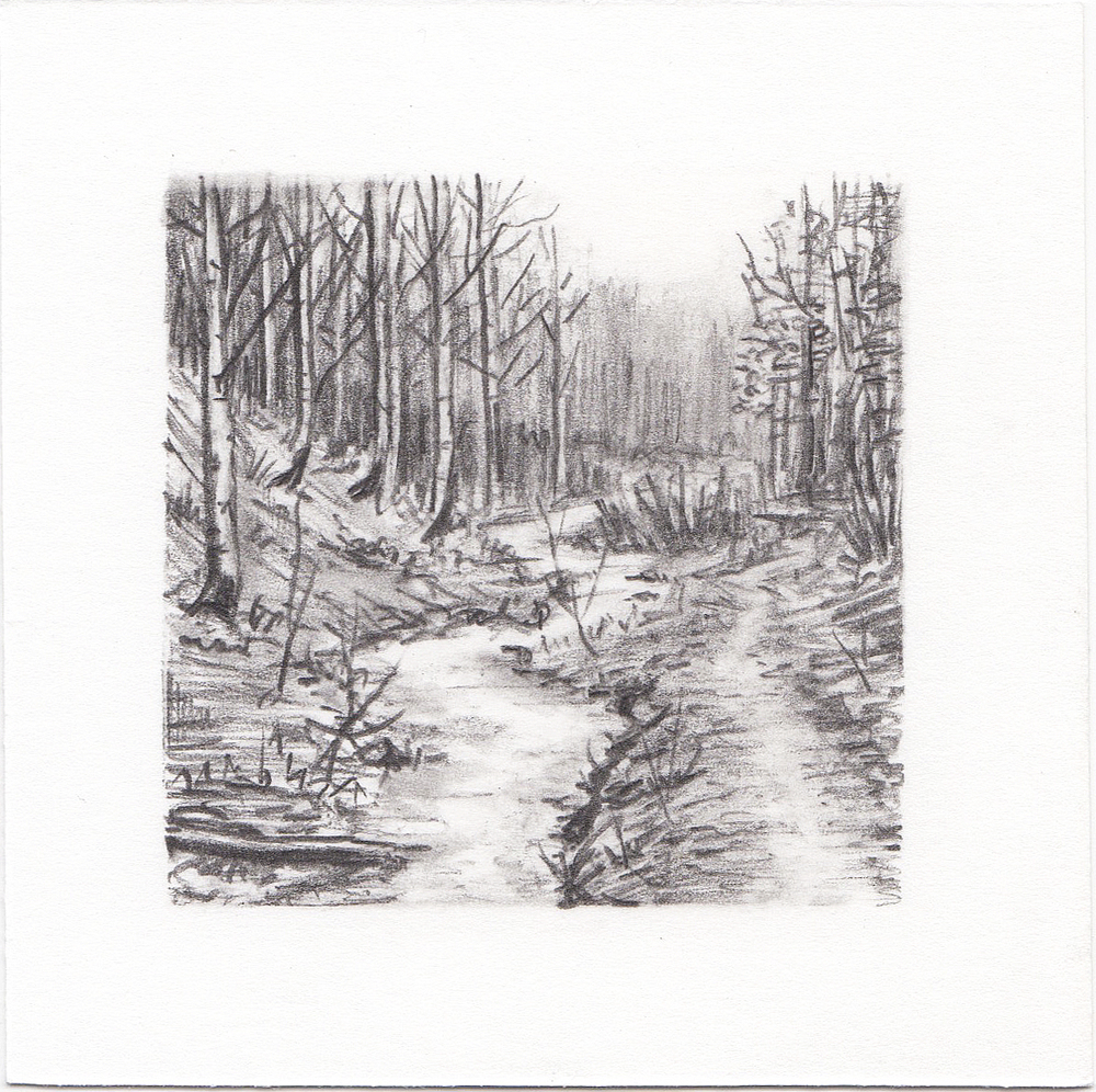 #12 Mill D North Fork, Big Cottonwood Canyon, Utah | 3x3 | graphite