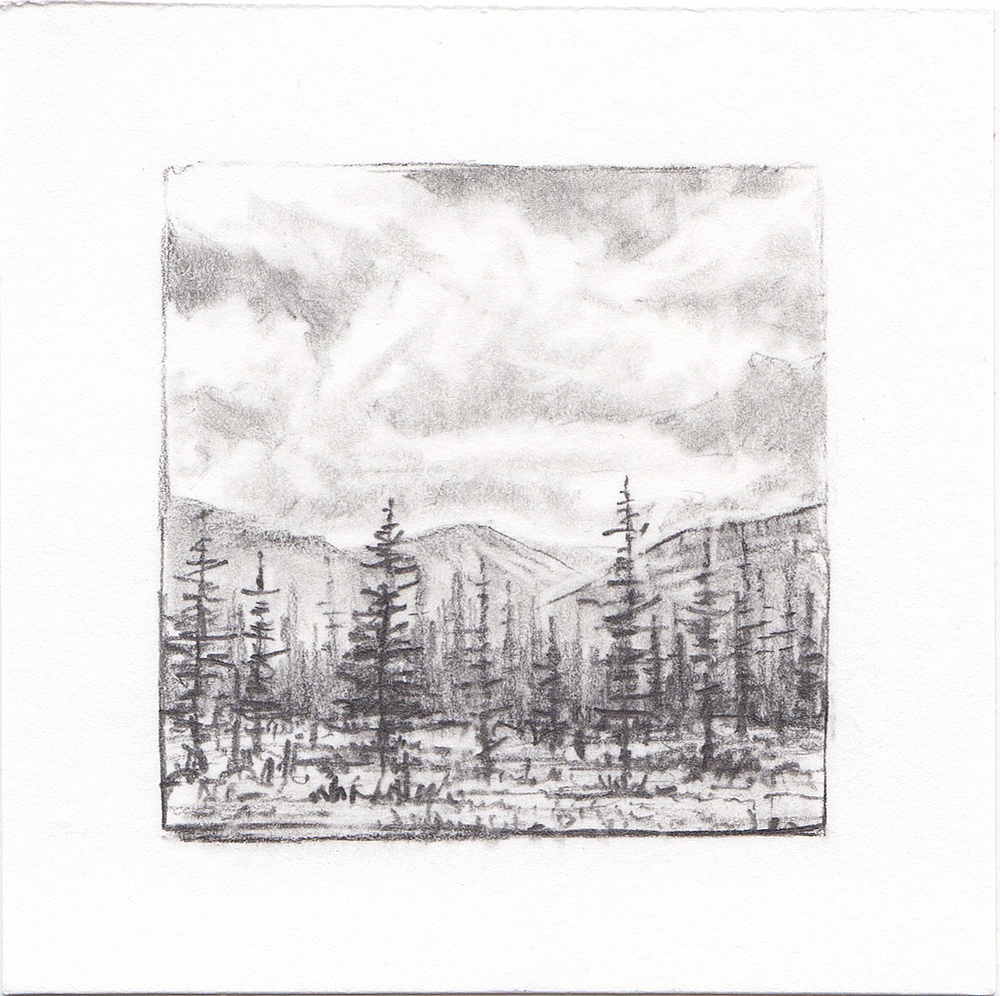 #16 Yosemite National Park,  California | 3x3 | graphite