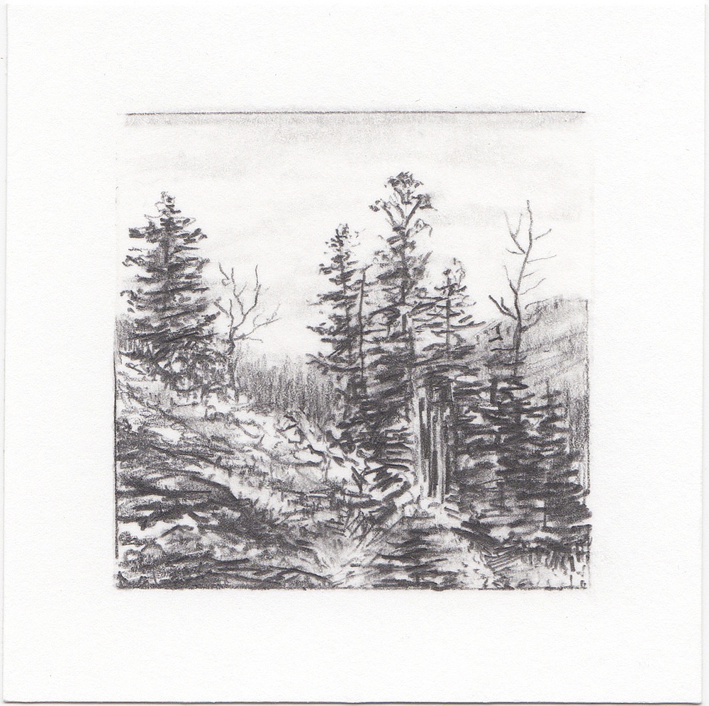 #17 Mill D South Fork, Big Cottonwood Canyon, Utah | 3x3 | graphite