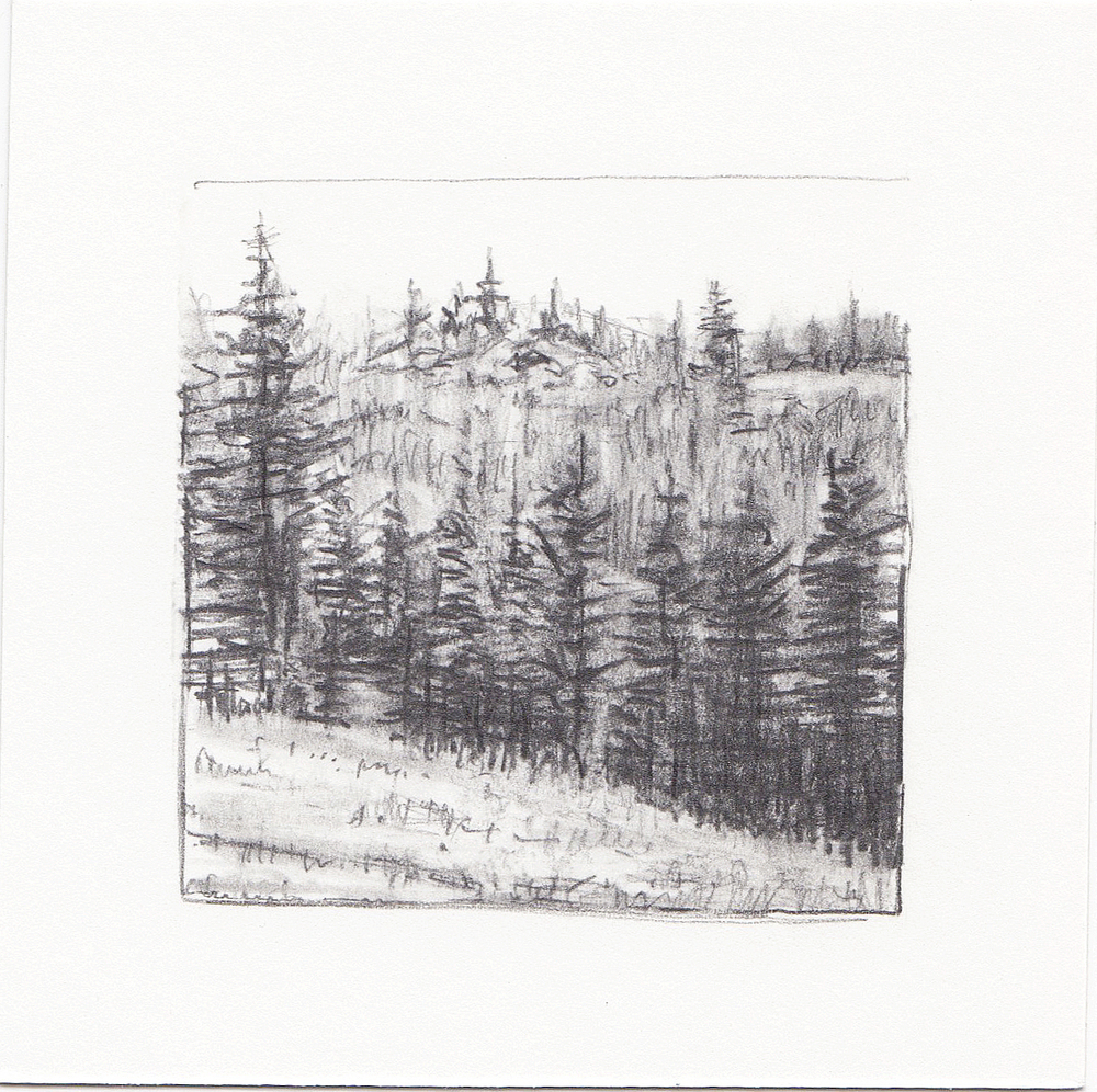 #40 Desolation Lake Trail, Wasatch Mountains, Utah | 3x3 | graphite