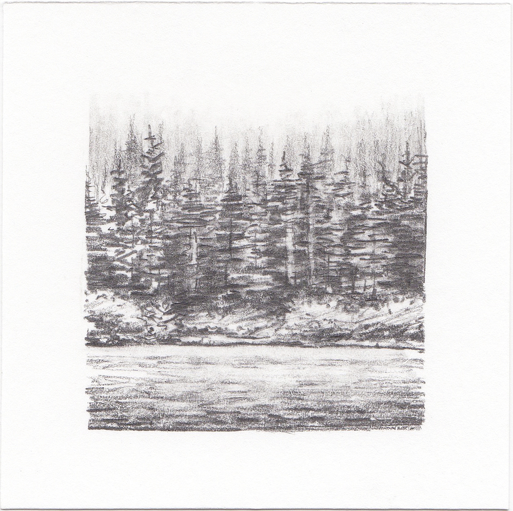 #44 Woods outside Portland, Oregon | 3x3 | graphite