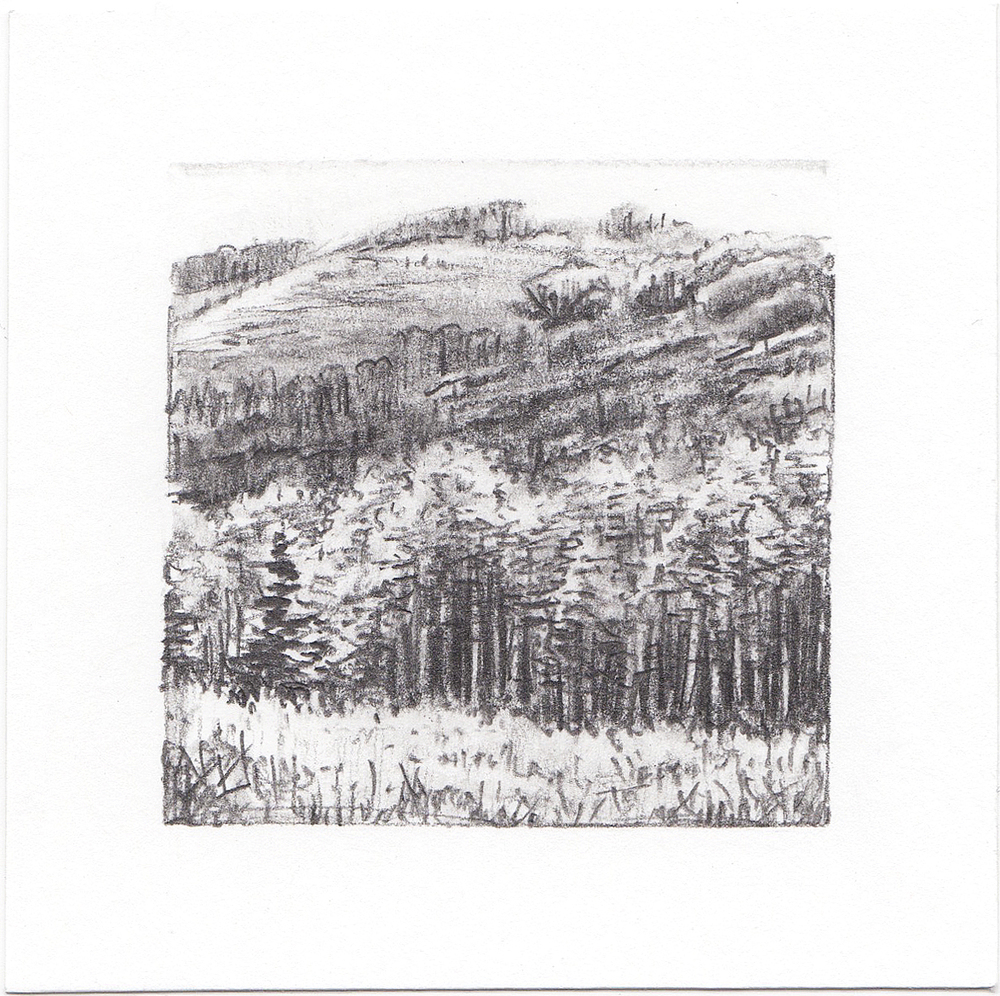 #61 Mill D North Fork, Dog Lake, Big Cottonwood Canyon, Utah | 3x3 | graphite