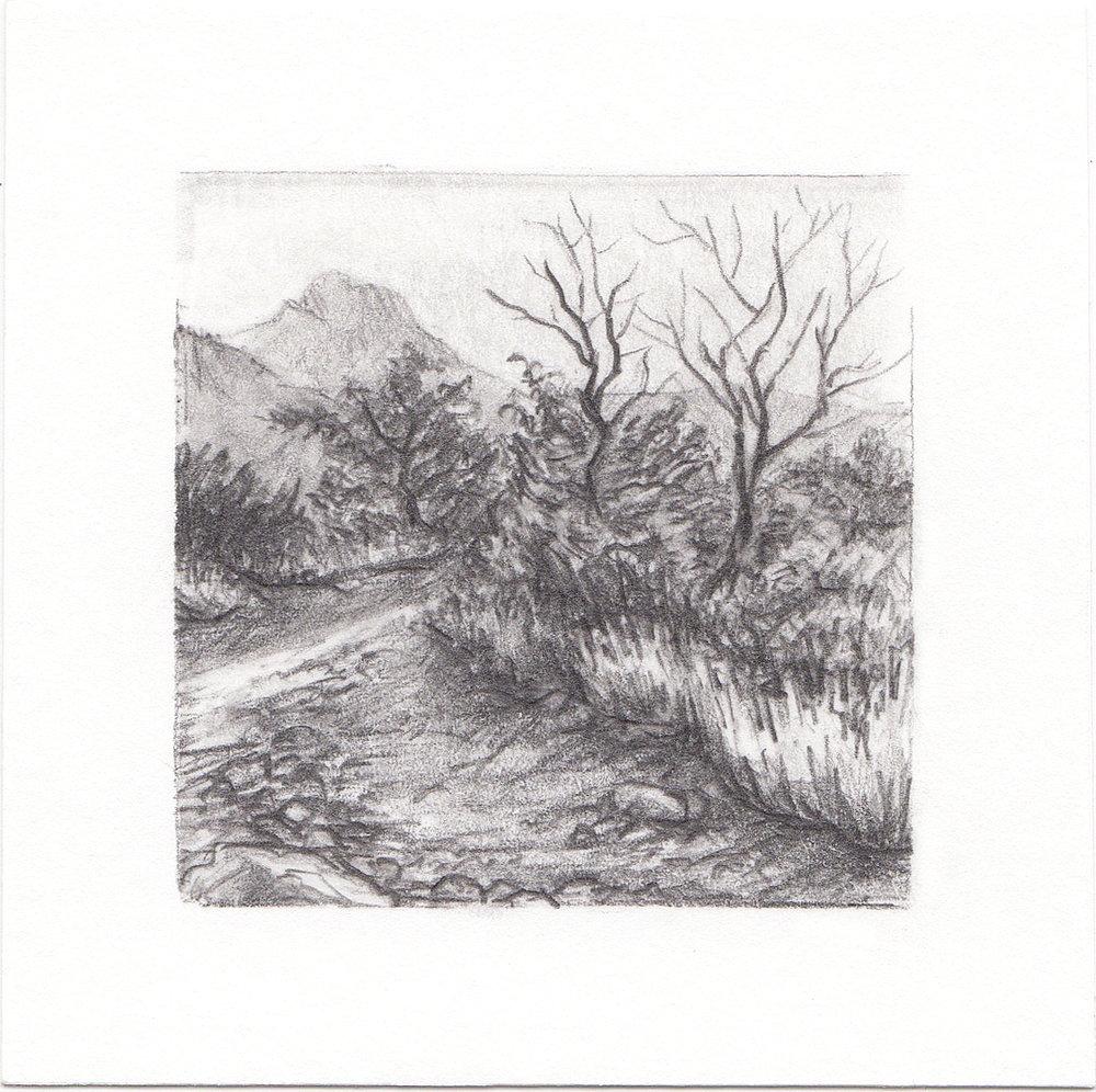 #62 Lone Peak, Wasatch Mountains, Utah | 3x3 | graphite