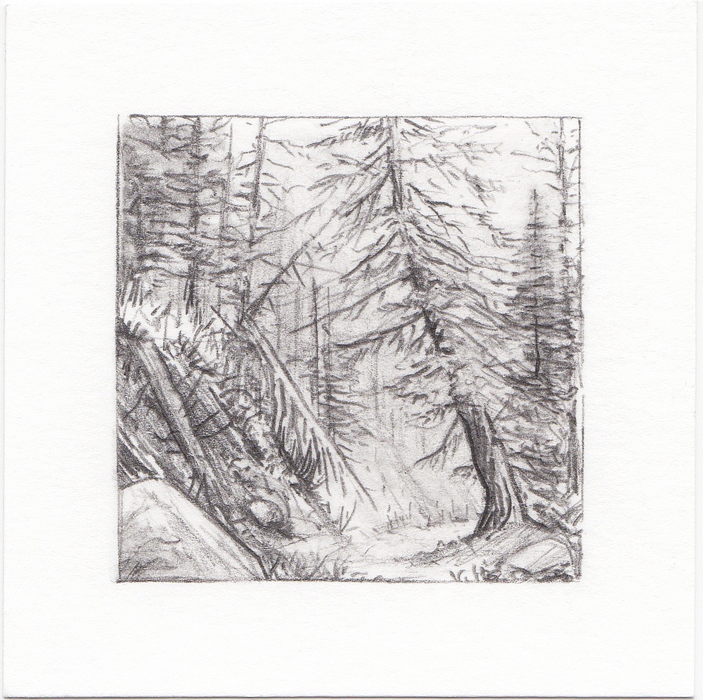 #64 Mill D South Fork, Big Cottonwood Canyon, Utah | 3x3 | graphite