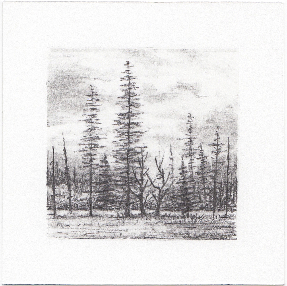 #65 Yosemite National Park, California | 3x3 | graphite