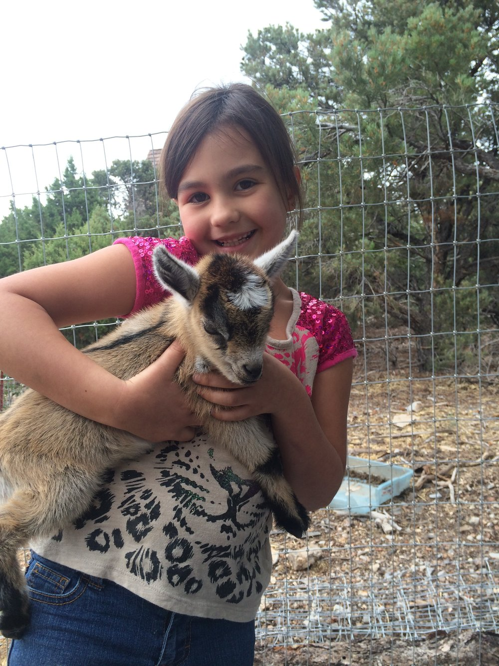 One of my grand babies with one of our goat babies...