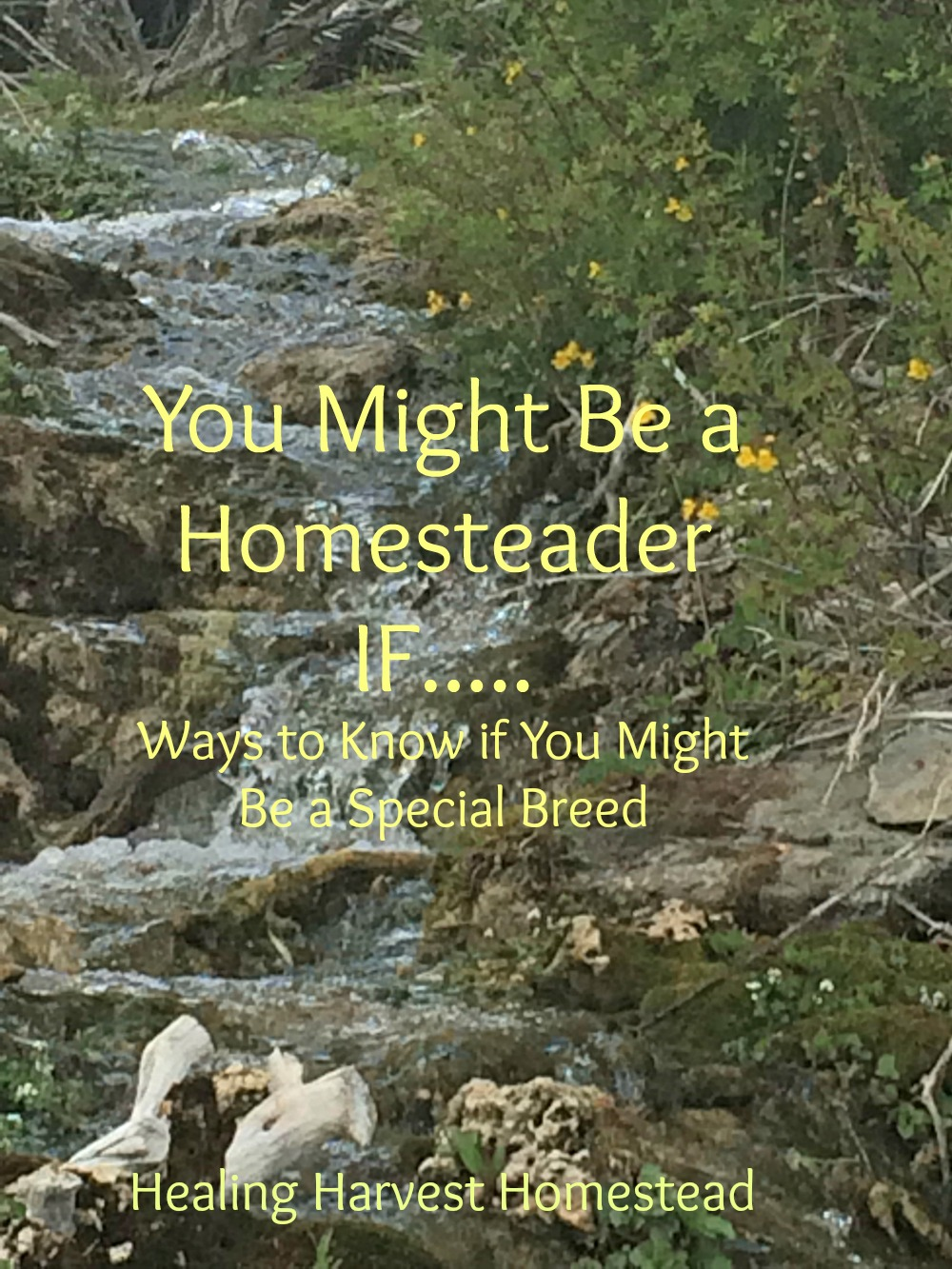 Check out the following list to see if you might be a homesteader!