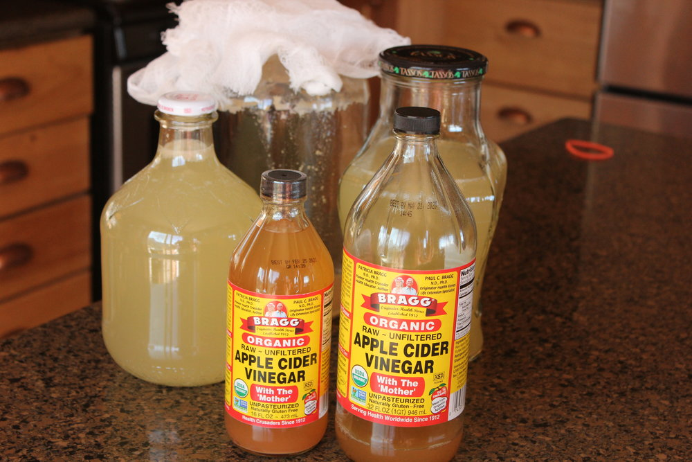 This picture shows the two half-gallons of raw ACV I got from my ferment.  I'm also showing a liter bottle and a half-liter bottle of Bragg's raw ACV.  Note that the cost of the 16 ounce bottle is about $4.00, and the 32 ounce bottle is nearly $7.00.  I made a gallon of excellent raw ACV for almost nothing!  Plus, mine tastes a LOT better (imho).