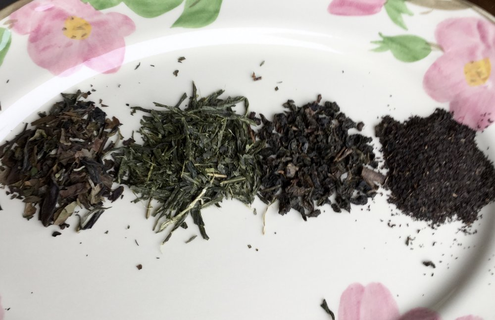 "Here is a little line up of the four main types of ""regular"" tea, otherwise known as Camellia sinensis.  From left to right:  White tea, Green tea, Oolong tea, Black tea."