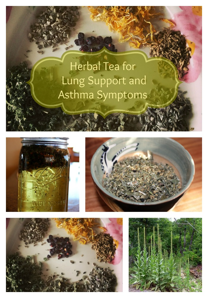 This herbal tea serves to strengthen and tone the lungs and respiratory system while providing some relief for asthma symptoms such as dry cough, wheezing, etc. If you add a little Chamomile, that will help with the anxiety associated with these symptoms too!