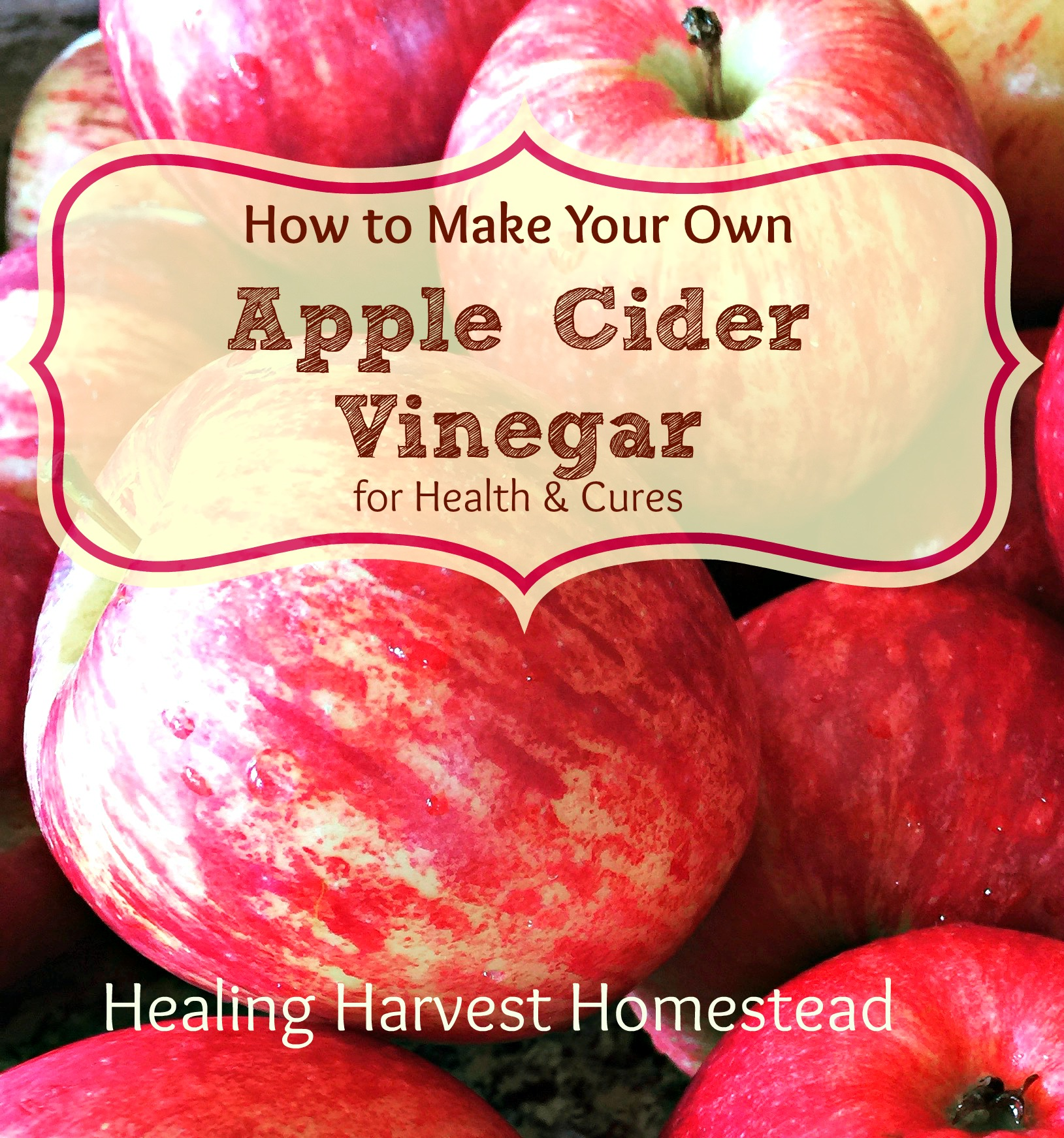How To Make Your Own Raw Apple Cider Vinegar Delicious