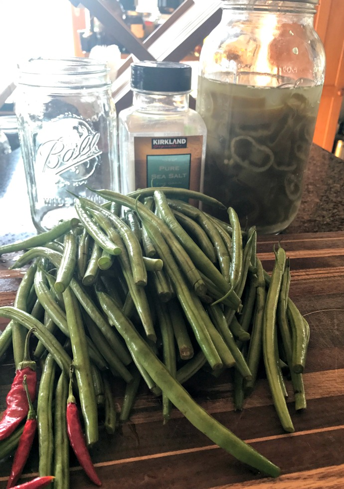 Here's the ingredients--except I left out the garlic! See the  jar of pepper rings in the Mason jar ? Those are already fermented. I'm using about 1/4 cup of that liquid to help the green beans get started, since I don't have any whey at the moment.