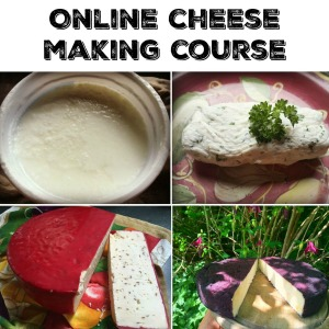 Click here to get the  Cheese Making Course!