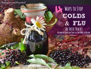 Most Popular: Herbs to Use to Stop Cold & Flu Right Away