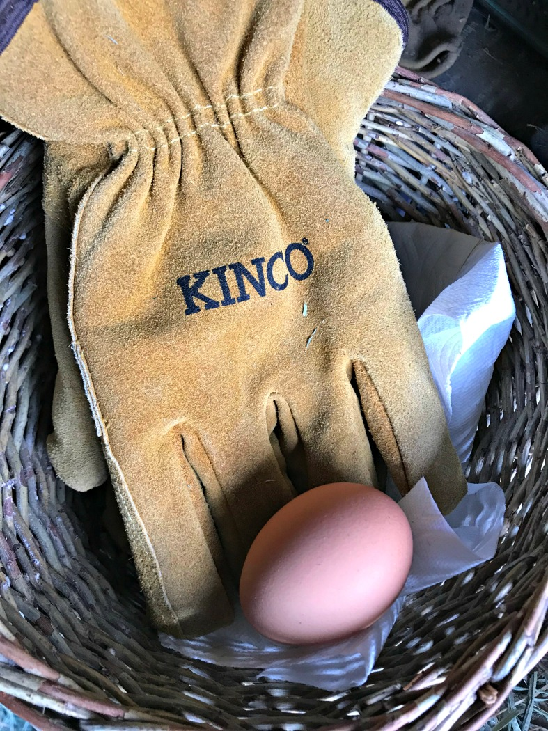 My  favorite winter work gloves  are similar to these by Kinco---And here is an egg I found out in the hay truck! :-)