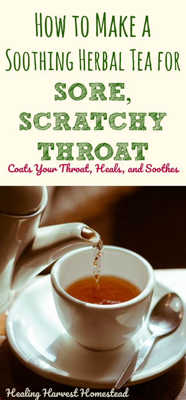 This herbal tea recipe will help that sore, scratchy throat go away FAST! It's soothing, healing, and anti-inflammatory, and your throat will feel some relief quickly. Find out how to make this herbal tea for sore throats! It's better than Throat Coat!