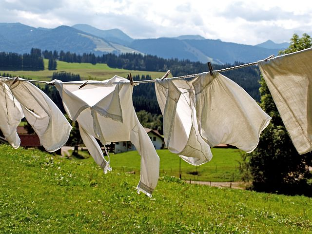 I love the fresh scent of clothes dried outdoors, don't you? It's a great way to go green and save money!