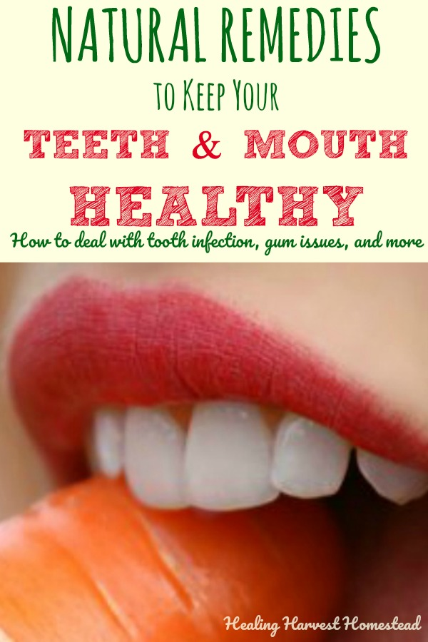 Scared of the dentist? Or just don't have the money for expensive tooth care? Here are healthy, natural ways to take care of your teeth and mouth to prevent tooth decay and mouth disease. Find out what to do if you have a tooth ache and how to take care of a mouth infection using natural remedies. Herbs, essential oils, and other natural cures can help you keep your teeth and mouth healthy!