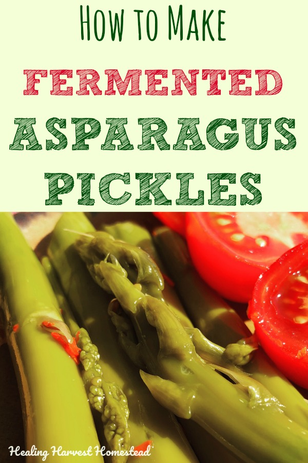 Have a ton of asparagus? Or maybe you just want to create some asparagus pickles that are seriously the most healthy you will ever make? Here's how to ferment asparagus and make the BEST asparagus pickles at the same time. Love asparagus like I do? You HAVE to try these homemade asparagus pickles! And the recipe is SUPER easy, too!