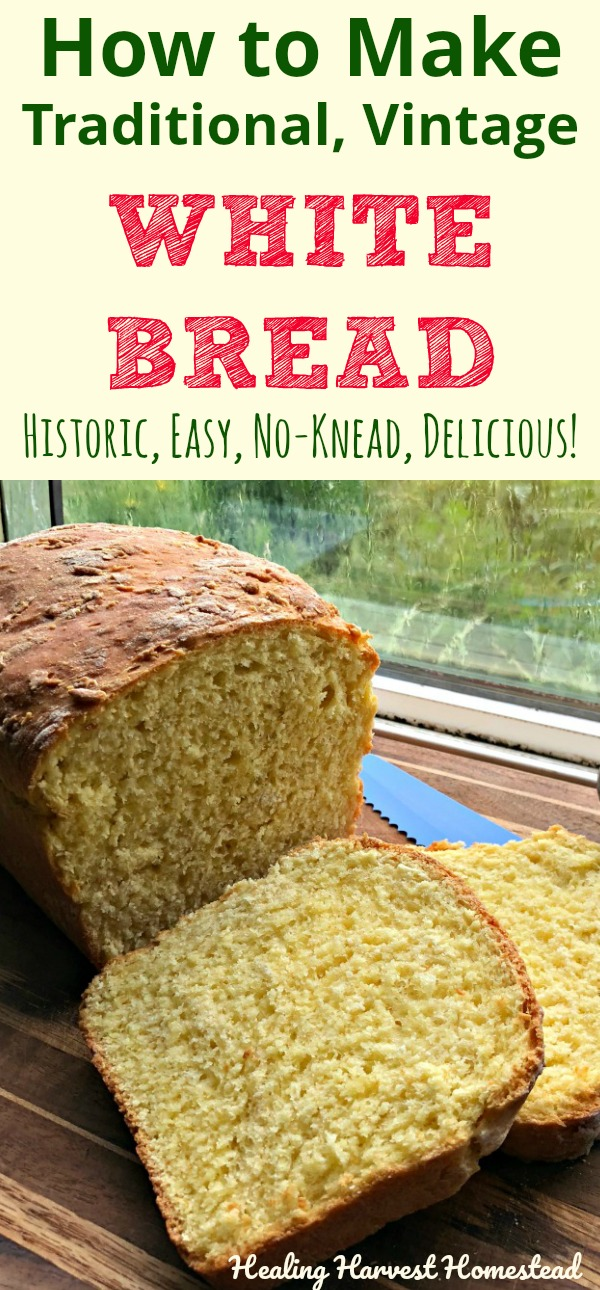 Yummy! Nothing warms the heart like fresh bread from the oven! This bread recipe dates back to the 1600's (or before), and it's just a perfect bread. It's a no-knead, easy, no-fail, historic bread recipe. Find out the directions for baking this traditional bread, and try it for yourself! You'll love it! #howtobakebread #breadrecipe #whitebread #whitebreadrecipe #oldfashionedbread #vintagebread #traditional #traditionalbread