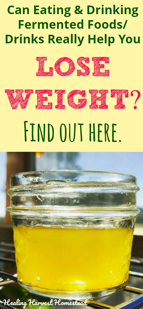 I have heard that eating and drinking fermented foods regularly can help you lose weight. Is this true? I decided to do some research and find out! Here's what I found out about losing weight with fermented foods and drinks. Either way---fermented foods are excellent for improving your gut health! #fermentedfood #loseweight #loseweightwithferments #fermenteddrink #homebrew