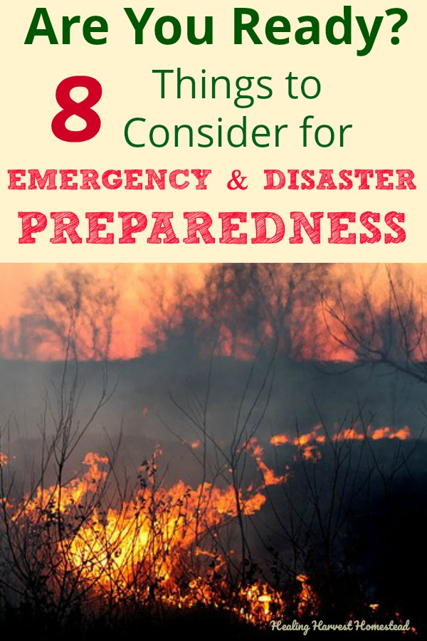 Are you ready for an emergency or a disaster? What if you need to evacuate? Or hole up in your house for a period of time? Is your family ready to deal with threats? Here are eight things to consider in your family's preparedness and survival efforts. You need to think about being well-rounded, too---it's not all about guns. #survival #survivalskills #preparedness #prepared #emergency #emergencypreparedness #disaster #disasterpreparedness #howtobeprepared