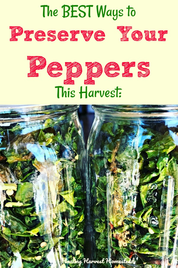 Growing a LOT of peppers this year? Or taking advantage of buying them at the Market? Here are the BEST ways to preserve your peppers for long-term storage. You'll find out how to dehydrate peppers, ferment peppers, and even freeze them. Pepper preservation for later is the thing right now! #peppers #hotpeppers #foodpreservation #dehydratepeppers #fermentpeppers #freezepeppers #howto #preserve #preserves #food #harvest