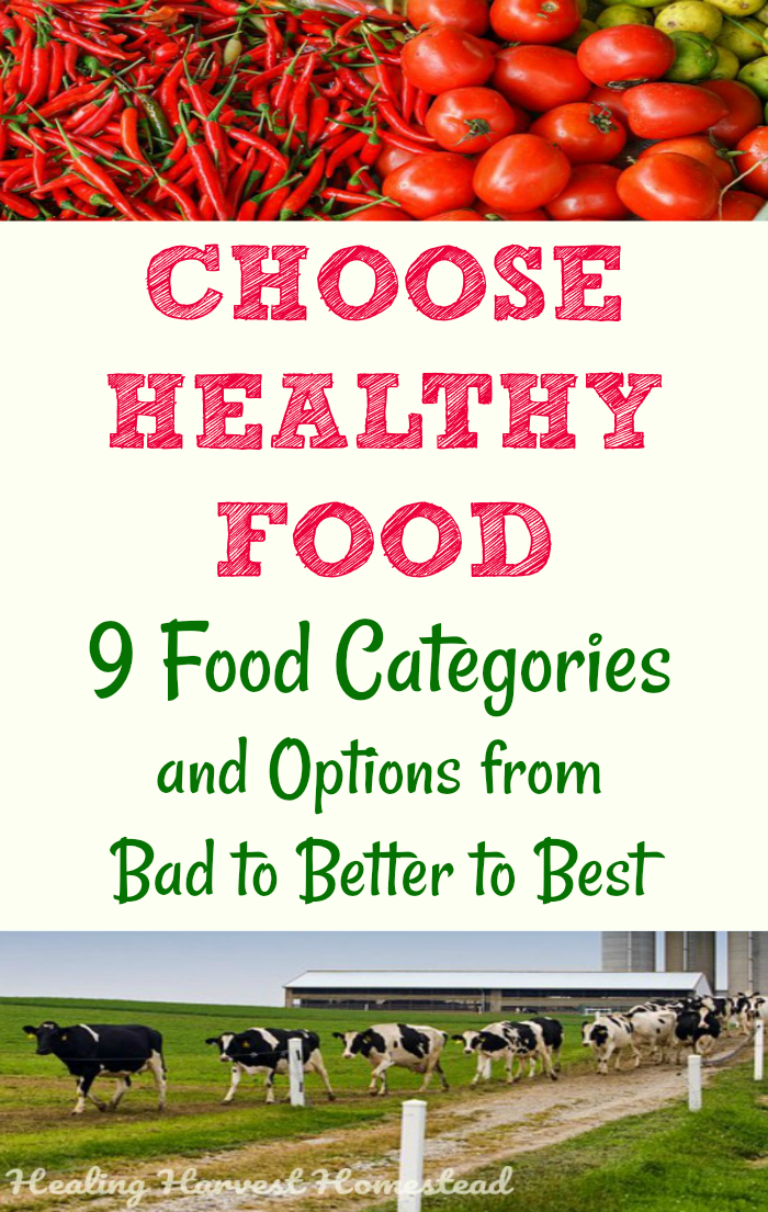 How do you choose healthy foods to eat? Which is better? Pasture-raised or grass-fed? How can you feed your family healthy food on a budget? Find out the BAD foods to choose, the BETTER foods, and the BEST foods to feed you and your family for a healthy life. Find out how to create a healthy eating lifestyle for you and family. Choose the most healthy foods. #pasture #grassfed #healthyfoods #howtochoose #eathealthy #mealplan #foodchoices #healthychoices #bestfoodchoices