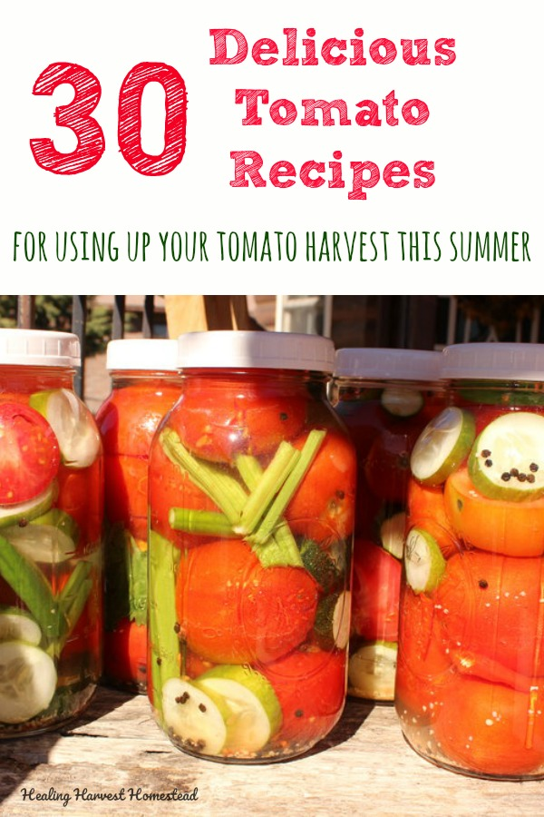 Do you have too many tomatoes and need some ideas for what to do with them? Here are 30 recipes for cooking, preserving, and using up those tomatoes in delicious, healthy ways. Salads, baked ideas, fermented tomatoes, sauces, jams, and LOTS more! Just click through for tons of tomato ideas! #tomatorecipes #fermentedtomatoes #dehydrated #dehydrate #tomatosauce #canning #fermenting #tomato #tomatoes #easy #healthy #yummy