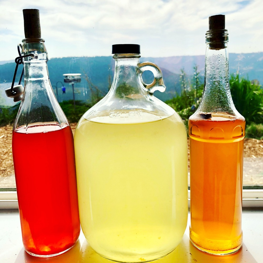 Here are three different homemade raw fruit vinegars: strawberry, apple, and cherry. We are making grape vinegar now! :-) **That floaty on the right is a bit of cork I couldn't get out of the bottle---OOPS.