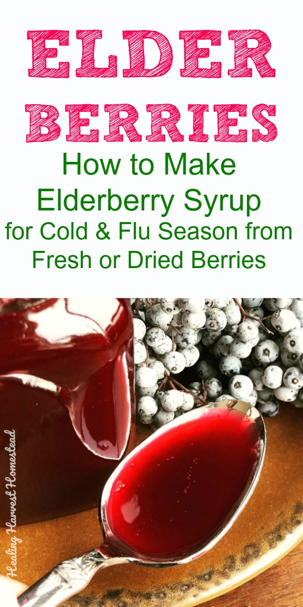 Elder berries are THE BEST natural remedy for cold and flu care. In fact, Sambucus, one of the top selling natural products in the stores is made with elder berries. Find out how you can make your own homemade (and better) elderberry syrup. Get it ready NOW before cold and flu season kick in. #elderberry #syrup #elderberrysyrup #cold #badcold #flu #getbetter #medicineforcold #medicineforflu #naturalhealth #healing #howtomake #healingharvesthomestead #coldcare #flucare #howtogetrid #feelbetter
