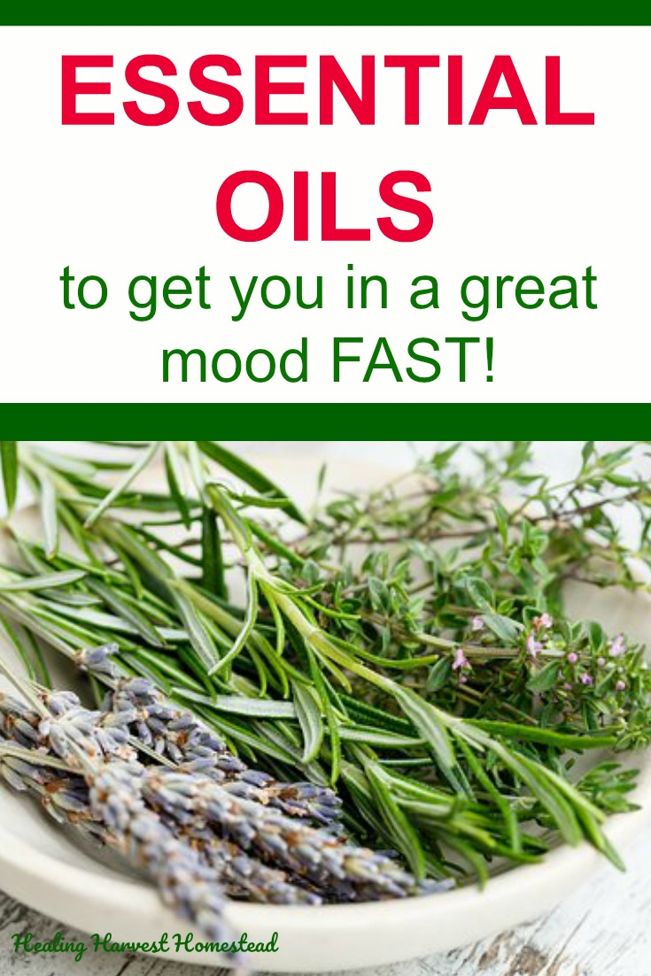 Are you feeling down? Or irritated? Do you have road rage or anger? Here's how to turn that frown upside down! Get yourself into a good mood fast with essential oils. Here are all the moods and how to change them so you are feeling happing, joyful, and content. Yes. Essential oils can do this FAST. #essentialoils #formood #foremotions #forhealth #forhappiness #healingharvesthomestead