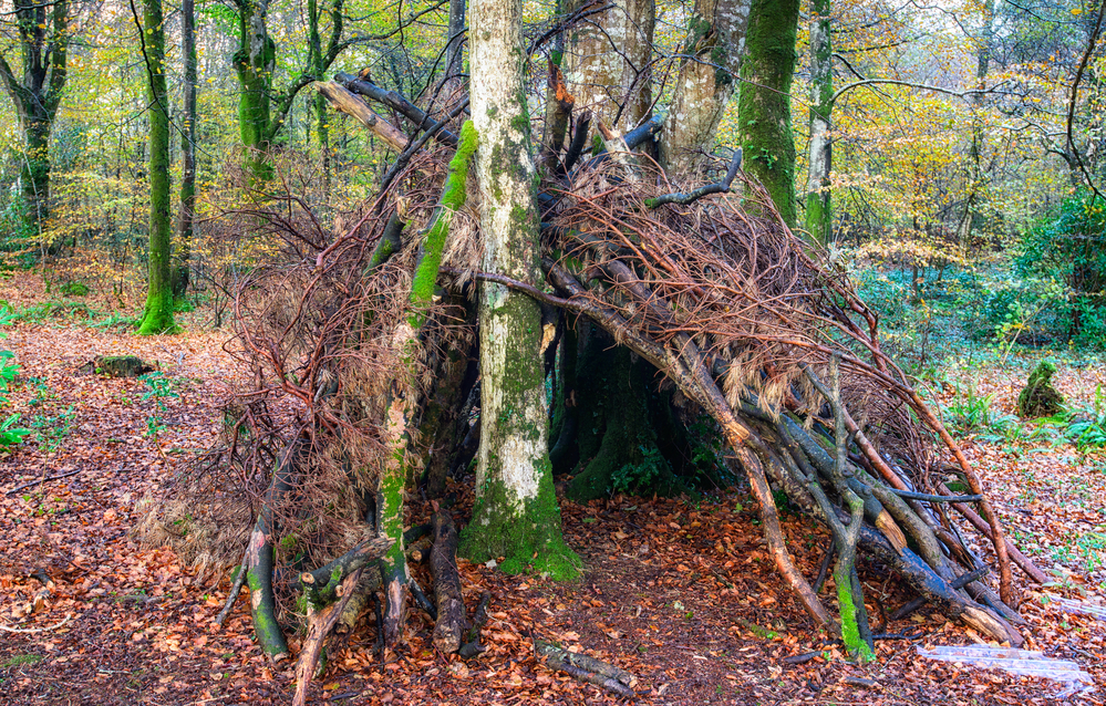 A survivalist will know how to build a great waterproof shelter quickly.
