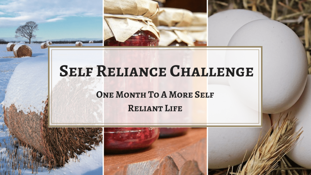 Follow along with us and other bloggers  taking this challenge! And perhaps….even challenge your self to become more self-reliant this year!