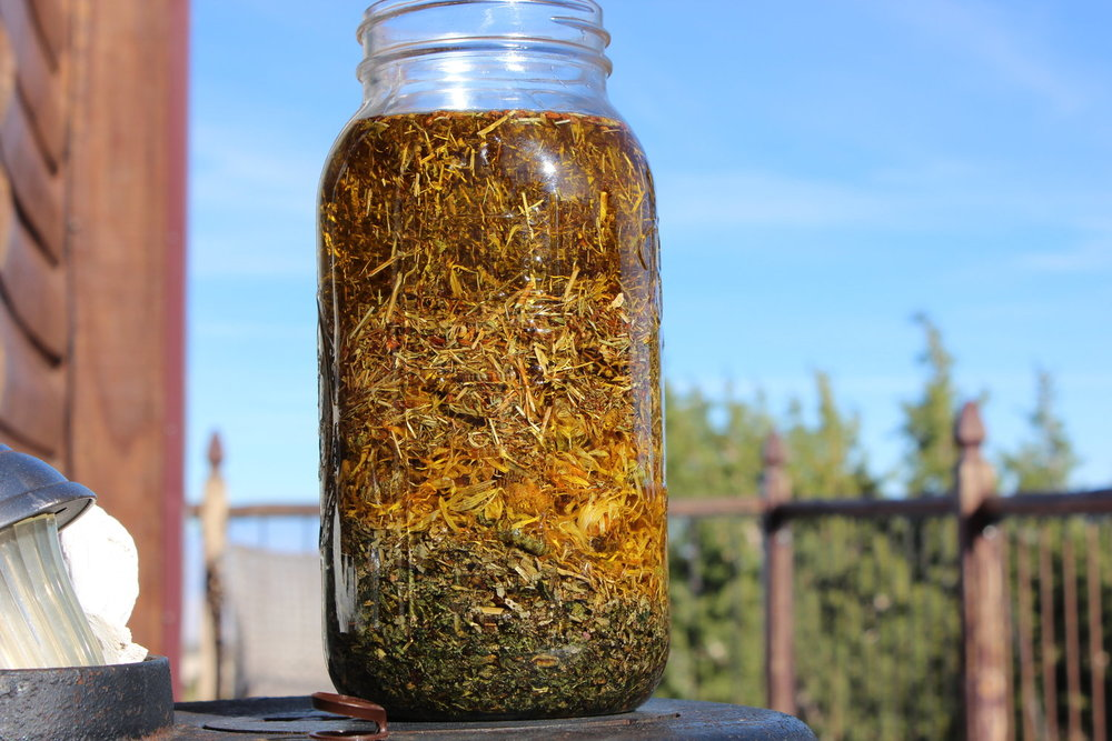 Here is a blend of St. John's Wort, Calendula, Plantain, & Comfrey. I will be using this to make a powerful healing salve in about 6 weeks, when this oil is completely infused. These herbs are suspended in the oil right now, but will settle. Isn't it beautiful?