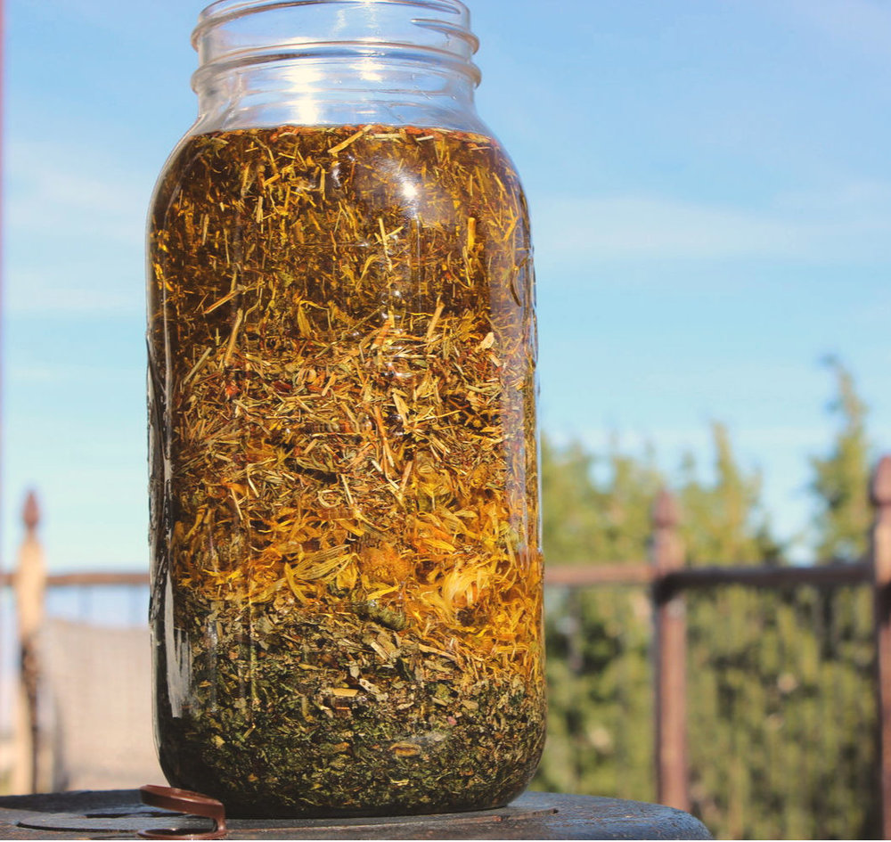"Here are several herbs infusing in oil. Aren't these lovely? This infusion has just started, and the plants look wonderful. As time goes on, and they break down, you'll know the oil infusion is ready. The plant matter will actually look ""spent."""