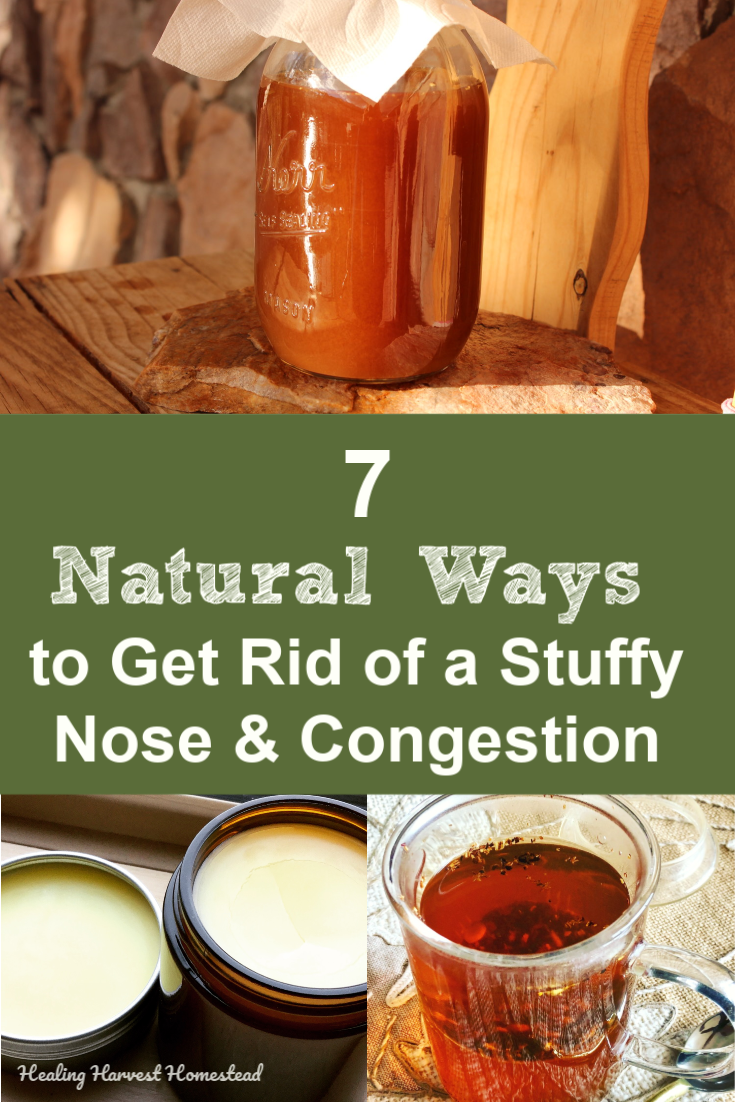 Have a stuffy nose due to seasonal allergies or a bad cold? If you need some natural ways to get rid of congestion, here are seven easy tips for you. These natural decongestants will help you feel better fast! #allergy #badcold #decongestant #congestion #sinus #stuffynose #getridof #healingharvesthomestead