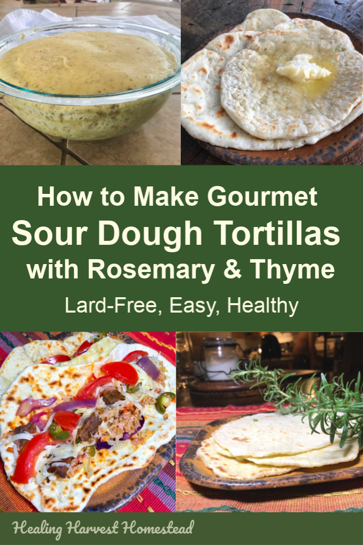 Mmmm…Delicious! These are the BEST tortillas I've ever had (my husband told me)! This handmade tortilla recipe is lard-free, healthy, easy, and SO delicious. It uses sour dough starter, so if you have some going on, you are going to make some incredibly tasty tortillas in no time at all. Quick. Easy. Fermented. Delicious. #tortillas #handmade #homemade #recipe #gourmet #lardfree #sourdough #healingharvesthomestead