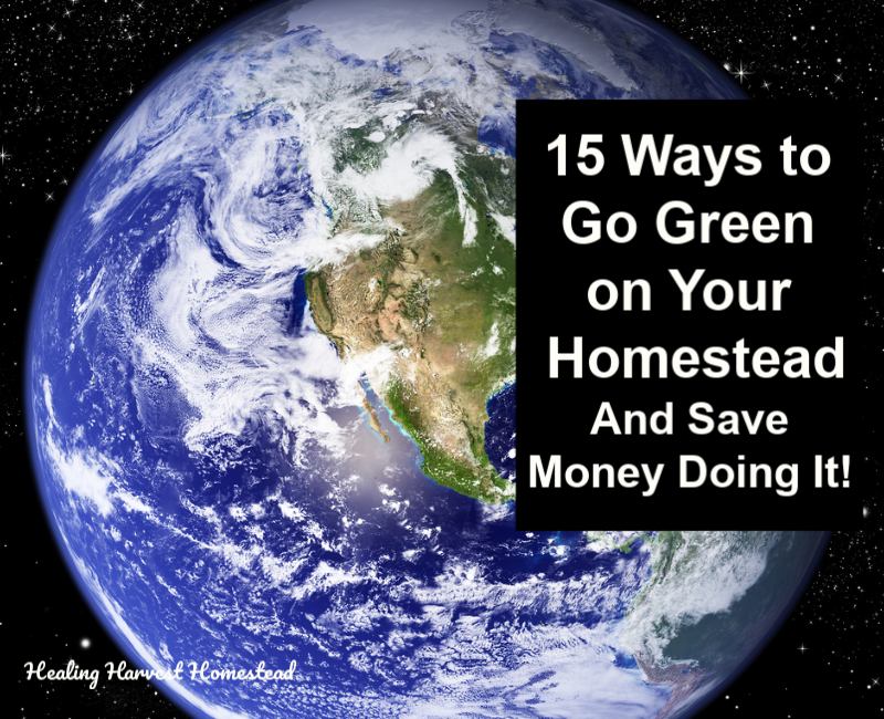The Green Living Homestead Ways To Save Money Help The